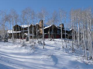 Ski & Snowboard in/Out New Custom Luxury Estate Home