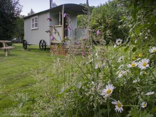 Spring Dale Shepherds Hut