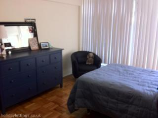 Spacious Coolidge Corner Apt