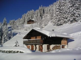 ALPAGE CHALET AT THE SAISIES SKI RESORT