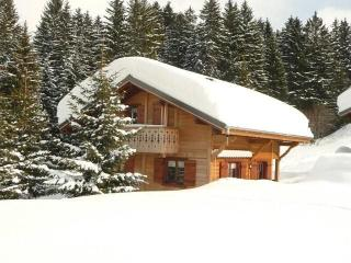 Chalet Ste Barbe on                          , calm, near station and markets