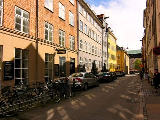 Inner city Copenhagen townhouse - sleeps 12!