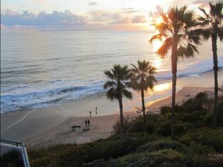 Laguna Beach Vacation Rental Home, SoCal