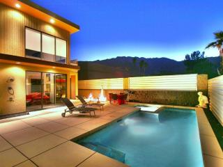 Palm Springs Modern Luxury