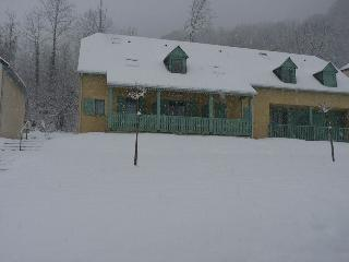 Cauterets CHALETS PEYRELANCE for 4 / 6 persons, very bright and pleasant terrace with wonderful view