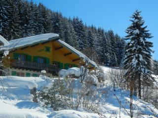 Chatel *** CHALET: THE DOORS OF THE SUN: 90 m2 *** ideally located near the center and lifts SUPERCHATEL