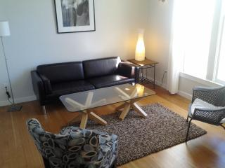 Awesome Noe Valley Contemporary 2 bed / 2 bath