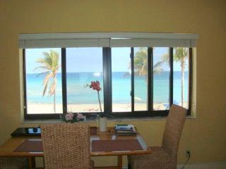 Condo on the Beach, Hollywood, FL, 1/11-18/13