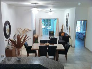 Amazing Condo Close 2 mamitas Beach And 5th Av Playa