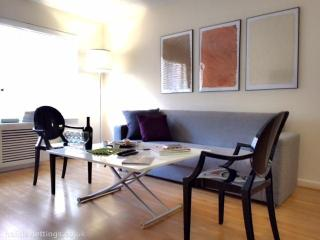 Luxury 1 bedroom in Chelsea NY