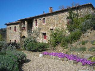 DREAM LOCATION IN CHIANTI:  POOL, GARDEN, PRIVACY