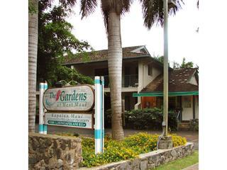 Gardens at West Maui 1 Bd/1 Bath 1wk Rent $155 day
