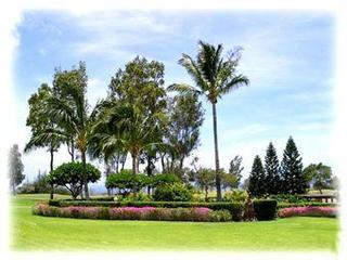 Hawaii Golf & Sea Condo Waikoloa