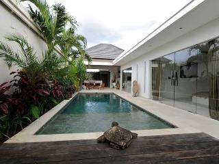 Fabulous Contemporary Villa in Seminyak