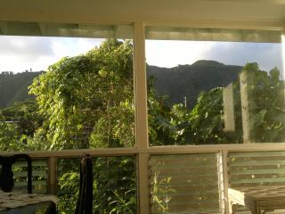 Two bedroom house - lush, tropical  mountain views