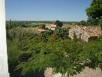 Traditional provencal farmhouse 7km from Uzès
