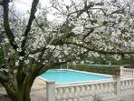 Collias villa rental - Pont du Gard - large swimming pool