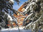 Nice one bedroom apartment (2 to 5 persons) Meribel Altiport. This lovely apartment equipped like at home is at 1750m. altitude with direct access to the (100m.) ski runs in winter