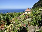 """CASA DAS HORTENSIAS COTTAGE"" - WIFI, SEA VIEW"