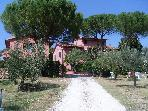 casa vacanze&quot; podere lo stringaio&quot; FAUGLIA (PISA)