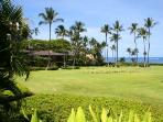 WAILEA ELUA, #1603^