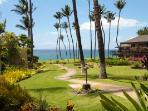 WAILEA ELUA, #1601