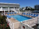 Condo at the Cove 97057 - BEACHFRONT WITH POOL