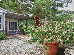 Nice house with garden by the sea - Elba Island