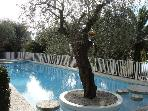 amazing studio Nice Mont Boron,pool, huge terrace