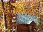 Hummingbird Hollow - 2 Bedroom Real Log Cabin with Pristine Mountain View, Wood Burning Fireplace, and Nintendo Wii