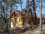 New Real Log Cabin  w/ Secluded Forest Views, Lake