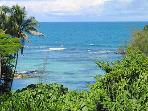 Mauna Loa Shores 2BR 3rd Flr on Hilo Bay (MLS306)