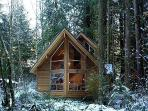 Snowline Cabin #4 - A pet friendly cedar cabin with a hot tub!