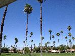 Comfortable and Convenient Rancho Mirage Condo