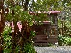 Mountain Chalet at Kilauea Volcano ** Special **