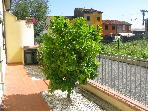 Cosy flat near the centre of Lucca with garden