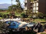 WIFI-KIhei-Wailea Fifth Floor Oceanview-Beachfront