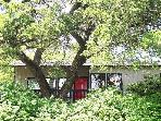 20% OFF IN DEC! Kaleido House-2/1 by Zilker Park!