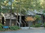 2 BR condo close to Mt. Baker in Snowater