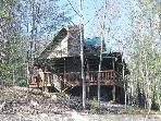 SASSAFRAS LODGE, Quiet Setting, Pets OK SPECIALS!
