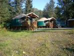 Yurt lodging in Seward -(2) 24ft.&amp; (1)30ft. Yurt