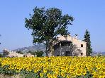 Special B&B in great location for exploring Marche