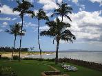 Oceanfront Paradise! Awesome Views! 3 Bed 2 Bath!