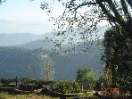 COTTAGE  in KASAULI HILLS