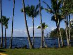 Best Location for Swimming and Snorkeling in Hilo