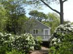 Romantic, Waterfront Orleans Cottage (1185)