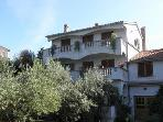Apartment 2584 A1(4+2) - Muline