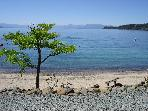 ** LAKEFRONT CONDO / SLEEPS 6 ** PRIVATE BEACH! **