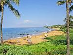MAKENA SURF RESORT, #E-205*