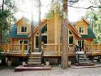 Log cabin Family Mansion